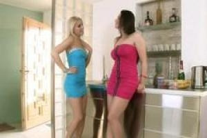 Brandy Smiles и Zafira дома одни и использующие возможность играть друг с другом
